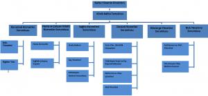 kalite yönetim şeması
